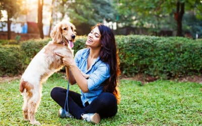 Four Local Dog Parks Your Furry Friend Would Love